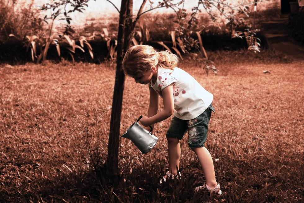 A young girl watering a tree.