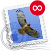 Apple mail icon with an infinity sign