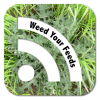 Weed your feeds - RSS Logo